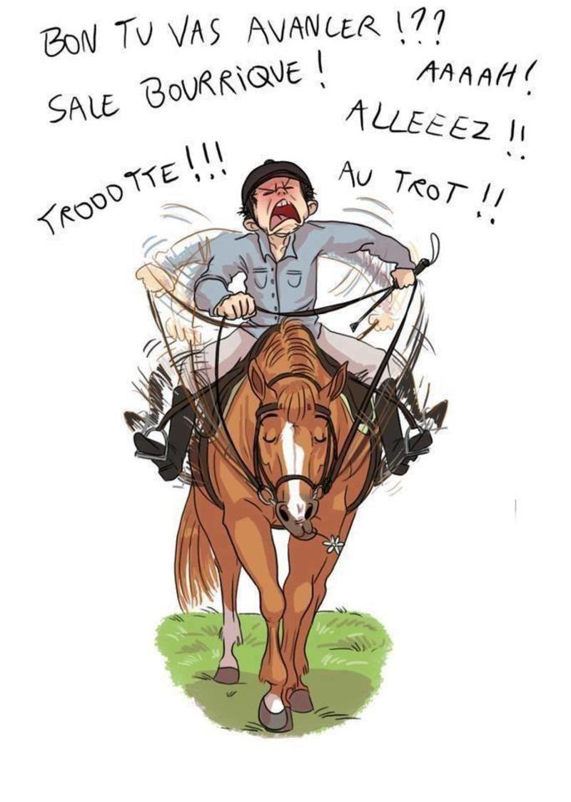 anniversaire cheval humour