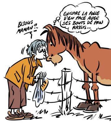 """Résultat de recherche d'images pour """"humour cheval"""""""